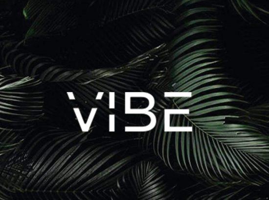 Vibe Male image